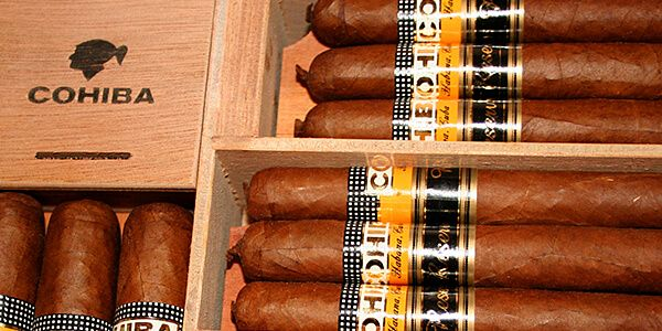 Cohiba cigars in a box